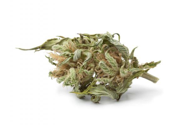 Cannabis Tabak Flavour | Aroma von Vape Rebelz®