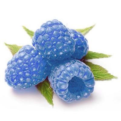 blaue Himbeere Flavour | Aroma von Vape Rebelz®